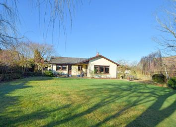 Thumbnail 3 bed detached bungalow for sale in Ashill, Cullompton