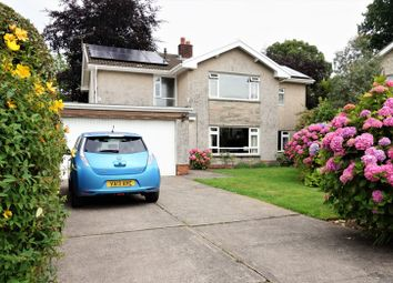 Thumbnail 5 bedroom detached house for sale in Rhyd Yr Helyg, Derwen Fawr
