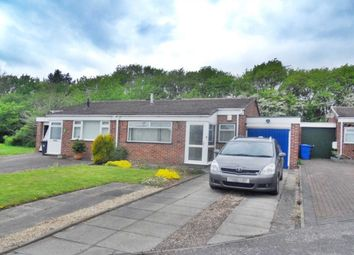 2 bed bungalow to rent in Malcolm Grove, Littleover, Derby DE23