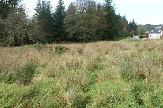 Thumbnail Land for sale in Portrigh Road, Carradale, Argyll