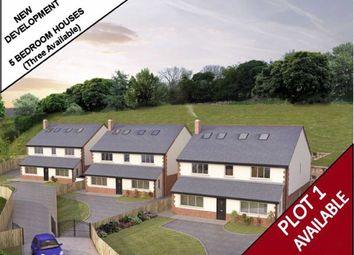 Thumbnail 5 bedroom detached house for sale in Ffordd Y Faenol Fach, Holywell, Flintshire