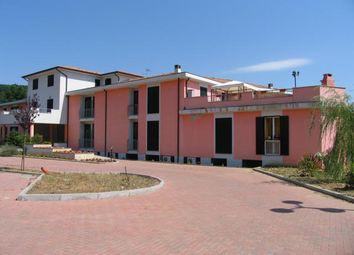 Thumbnail Studio for sale in Licciana Nardi, Massa And Carrara, Italy