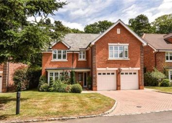 Thumbnail 5 bed detached house for sale in Chapel Pines, Camberley, Surrey