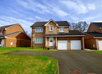 Thumbnail 4 bed detached house to rent in Summerpark Road, Dumfries, Dumfries And Galloway