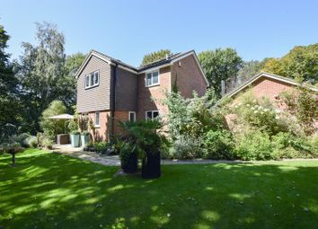 Thumbnail 4 bedroom detached house for sale in Fletcher Avenue, St. Leonards-On-Sea