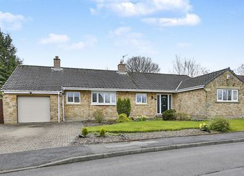 Thumbnail 3 bed bungalow for sale in Willow Park, Langley Park, Durham