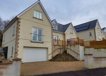 Thumbnail 3 bedroom detached house for sale in Glenfryn, Porthyrhyd, Carmarthen