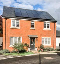 Thumbnail 4 bed detached house for sale in Reed Way, Petersfield