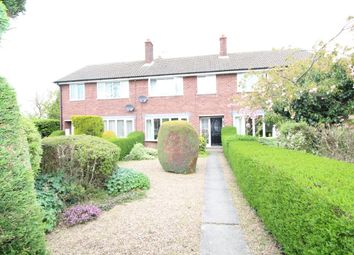 Thumbnail 3 bed terraced house to rent in Back Lane, Hambleton, Selby