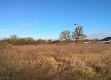 Thumbnail Land for sale in The Wyches, Little Thetford, Ely