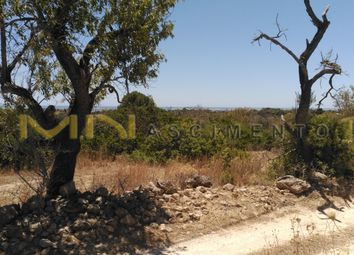 Thumbnail Land for sale in Quatrim, Moncarapacho E Fuseta, Olhão, East Algarve, Portugal