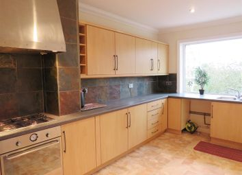Thumbnail 3 bed flat to rent in New Church Road, Hove