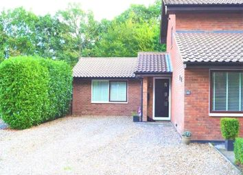 Luckley Wood, Wokingham, Berkshire RG41. Studio to rent