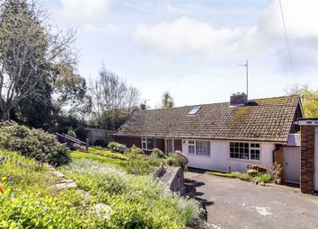 Thumbnail 4 bed bungalow for sale in Little Birch Road, Hereford, Herefordshire