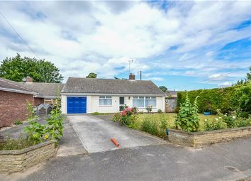 Thumbnail 3 bed detached bungalow for sale in Common Lane, Sawston, Cambridge