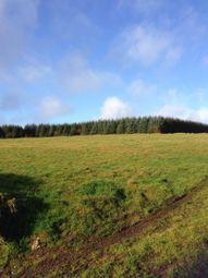 Land for sale in Cwmduad, Carmarthen SA33
