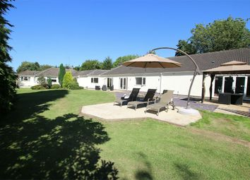 Thumbnail 6 bed detached bungalow for sale in Castle Rising Road, South Wootton, King's Lynn