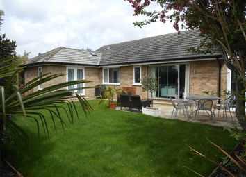 Thumbnail 4 bed detached bungalow to rent in Riverview Road, Ewell, Epsom
