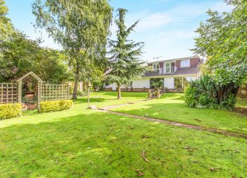 Thumbnail 4 bed detached bungalow for sale in Botley Road, Fair Oak, Eastleigh