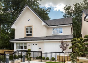 "Thumbnail 3 bedroom detached house for sale in ""Balvenie"" at Templegill Crescent, Wishaw"
