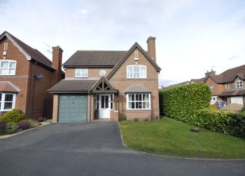 Thumbnail 4 bed detached house to rent in Tawny Way, Littleover, Derby