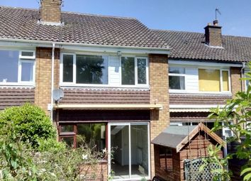Thumbnail 3 bed terraced house to rent in Dolphin Court, Chester