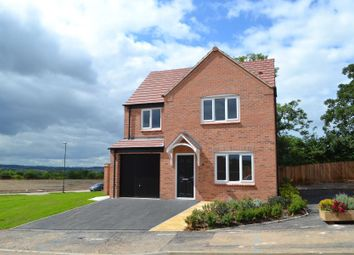 Thumbnail 4 bedroom detached house to rent in Kingsgate Road, Chellaston, Derby