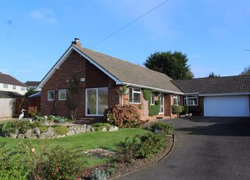 Thumbnail 4 bedroom bungalow for sale in Larkfield Close, Farnham
