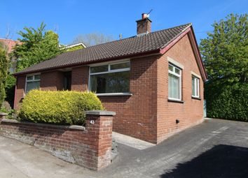Thumbnail 2 bedroom bungalow to rent in Donaghadee Road, Newtownards