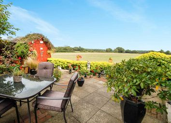 Thumbnail 4 bed detached house for sale in Earl Warren, Croxton, Thetford, Norfolk