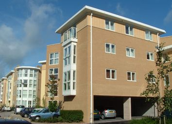 Thumbnail 2 bedroom flat to rent in St Davids Hill, Exeter