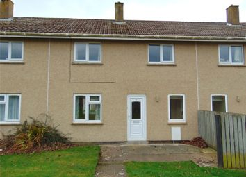 Thumbnail 2 bed terraced house to rent in Tedder Place, Longhoughton, Alnwick, Northumberland