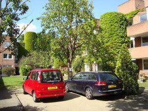 Thumbnail 2 bed flat to rent in Arterberry Road, Wimbledon