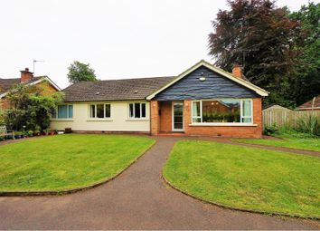 Thumbnail 4 bed detached bungalow for sale in Glen Road, Jordanstown