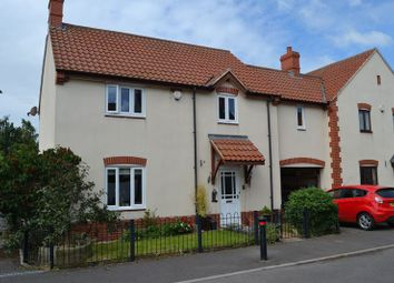 Thumbnail 4 bed detached house to rent in Partridge Close, Greinton, Bridgwater