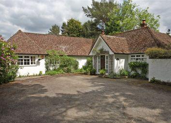 Thumbnail 4 bedroom detached bungalow for sale in Old Park Lane, Farnham, Surrey
