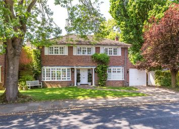Thumbnail 4 bed detached house for sale in Sunderland Avenue, St. Albans, Hertfordshire