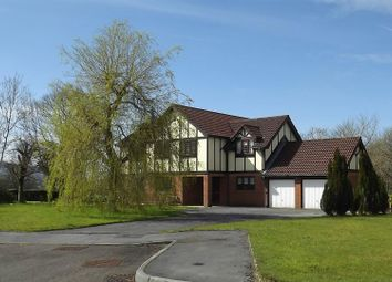 Thumbnail 6 bedroom detached house for sale in Parc Bwtri Mawr, Ammanford