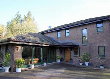 Thumbnail 3 bed detached house for sale in The Vineyard, Monmouth