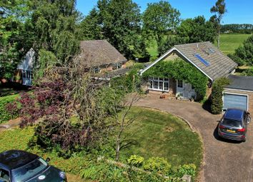 Thumbnail 4 bed detached bungalow for sale in Park Farm Lane, Nuthampstead, Royston