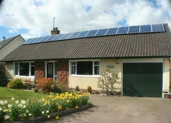 Thumbnail 5 bedroom detached bungalow for sale in Perth Road, Abernethy, Perth