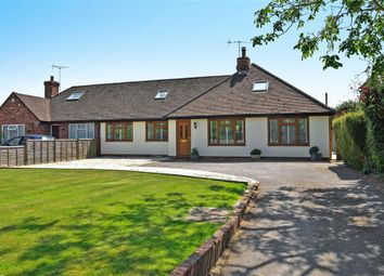 Thumbnail 5 bed bungalow for sale in Barnham Road, Eastergate, West Sussex