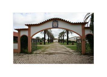 Thumbnail Detached house for sale in Herdade De Cadouços, Bemposta, Abrantes