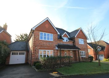 Thumbnail 5 bedroom detached house to rent in Stansfield Close, Reading