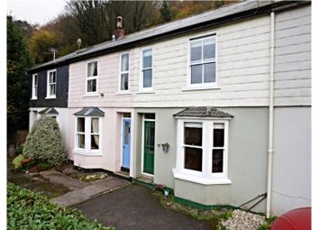 Thumbnail 2 bed terraced house for sale in Ferndale, Dartmouth