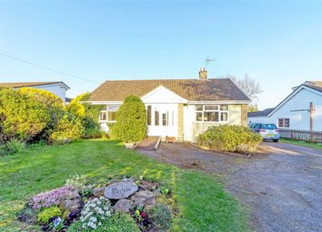 Thumbnail 3 bed bungalow for sale in Tabernacle Road, Llanvaches, Monmouthshire