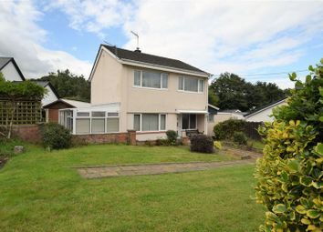 Thumbnail 3 bed link-detached house for sale in New Road, Lifton