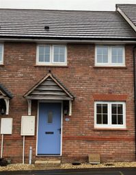 Thumbnail 2 bed terraced house for sale in Blackmore Avenue, Bideford