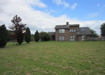 Thumbnail 5 bed detached house to rent in Isleham Road, Freckenham, Bury St. Edmunds