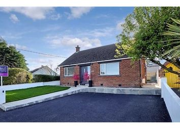 Thumbnail 4 bed detached bungalow for sale in Bellevue, Bangor